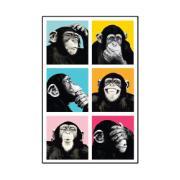 Placa Decorativa em MDF 29x19 cm Macacos 5297 - Cia Laser