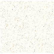 Cerâmica Aruana Esmaltada Brilhante Tipo A 53x53cm 2,27m² Branca - Arielle